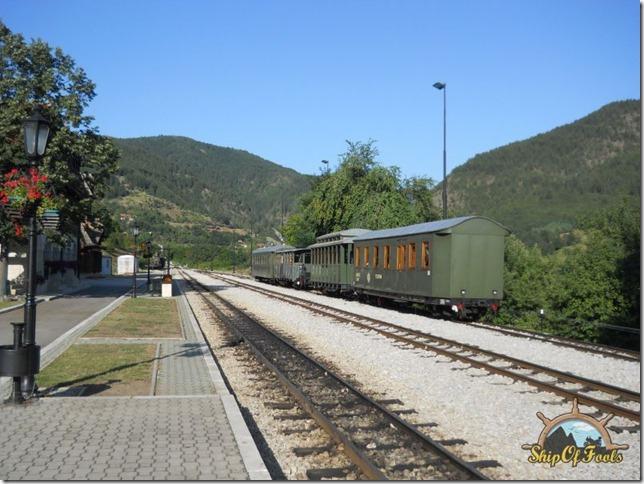 DSCN3537